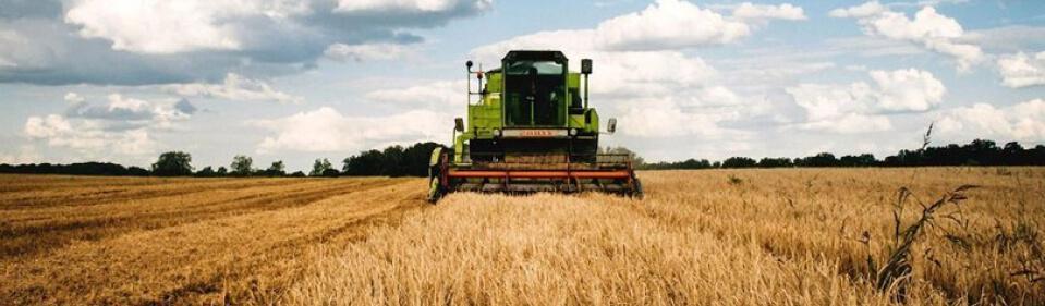 Agricultural Sector - Mes Döküm